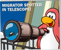 Club Penguin Times Rockhopper Spotted