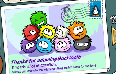 orange-puffle-buy2