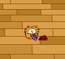 orange-puffle-playing1