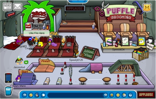 puffle11-party5