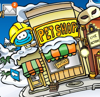 pet-shop-renovation