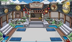 Image of ninja room on Club Penguin
